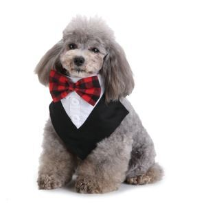ペットスカーフ ペットボウタイ 首輪 紳士 結婚式 パーティー お出かけ 調節可能 オシャレ アクセサリー