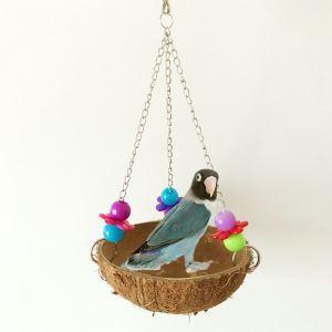 インコの巣 鳥の巣 ハムスターの巣 巣箱 ココヤシ巣 オウム ナチュラル 天然 玩具付き
