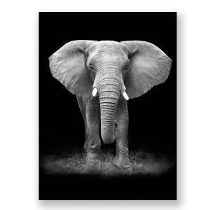 絵画 油彩画 アートパネル 装飾絵画 壁飾り 象 プレゼント 1pcs 30*45cm