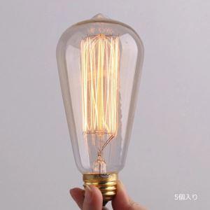 レトロなエジソン電球 ハロゲン電球 口金E26 ST64 40W 5個入り