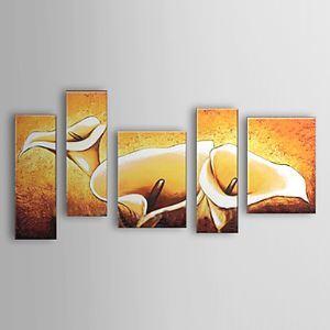 油絵画 手描き植物画 海芋 5枚セット 1302-FL0055