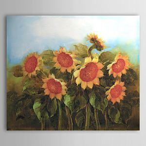 油絵画 手描き植物画 ヒマワリ 1303-FL76