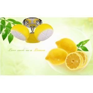 シーリングライト 照明器具 リビング照明 子供屋照明 オシャレ照明 レモン造形 3灯