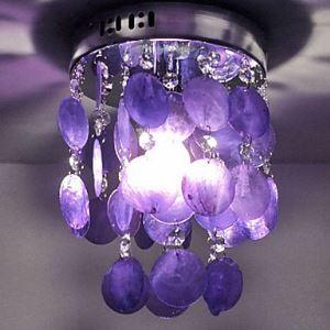 ミニシーリングライト 天井照明 シェル照明 照明器具 1灯