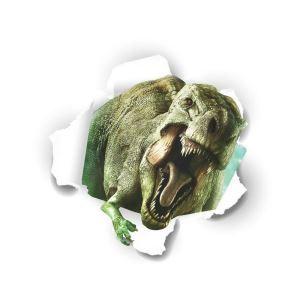 3Dウォールステッカー 立体DIY 転写式ステッカー PVCシール シート 剥がせる Tyrannosaurus Rex roars ZYVA1449