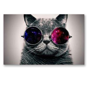 絵画 油彩画 アートパネル 装飾絵画 壁飾り メガネ猫 プレゼント 1pcs 30*45cm