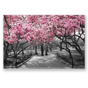 絵画 油彩画 アートパネル 装飾絵画 壁飾り 桜 プレゼント 1pcs 30*45cm