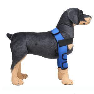 ペット用リハビリ 関節プロテクター マジックテープ 犬用膝サポーター 犬骨折治療 小型犬 中型犬 大型犬 老犬介護 保健 ケア用品 レッド ブルー