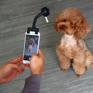 ペット用 自撮り棒 セルカ棒 撮影ツール 犬猫用 おもちゃ スマホに最適