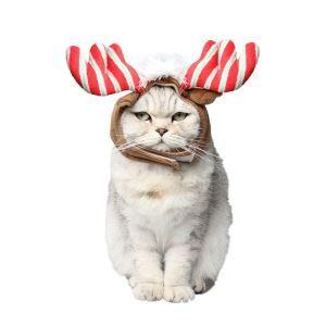 ペット服 クリスマス帽子 クリスマス 鹿角帽 髪飾り 犬猫用 パーティー かわいい コスチューム ベルボア