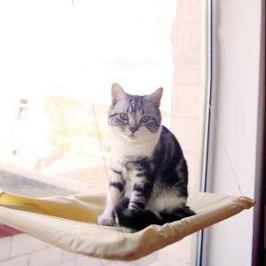 ペットハンモック 猫ハンモック 猫ベッド 吸盤式 窓 日光に浴び