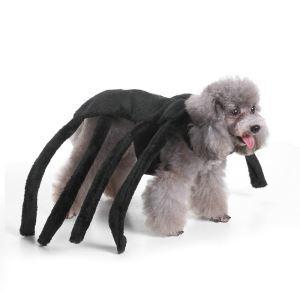 ペット服 ハロウィン 蜘蛛 コスプレ スパイダー 仮装 お祝い日 おしゃれ 可愛い 犬服 猫服