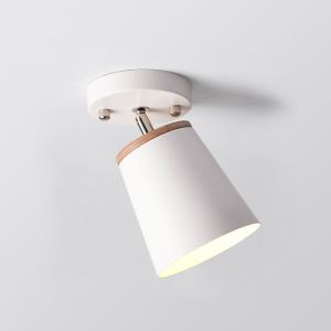 スポットライト シーリングライト 照明器具 玄関照明 店舗照明 食卓照明 回転可能 黒白色 1灯