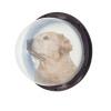 ペット用品 窓 透明 アクリルドーム 覗き窓 犬猫 飾り物 犬の小部屋の窓/扉