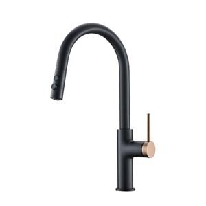 キッチン水栓 台所蛇口 引出し式水栓 水道蛇口 冷熱混合栓 整流&シャワー吐水式 2色