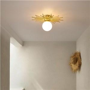 シーリングライト リビング照明 ダイニング照明 寝室照明 子供屋照明 放射型 1灯