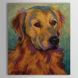 油絵画 手描き動物画 犬 フレームなし 1304-AN0089